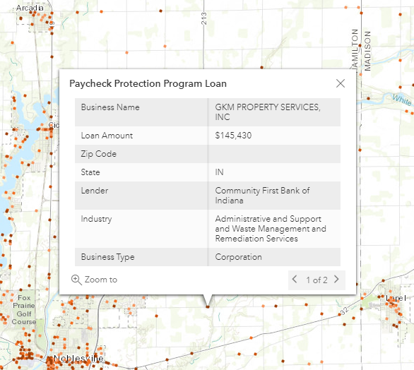 screenshot of the PPP loan details pop-up window