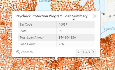 screenshot of PPP loan summary pop-up window